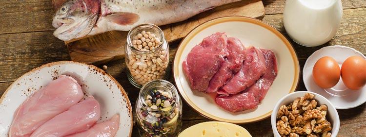Wie viele Proteine benötigt der Körper?