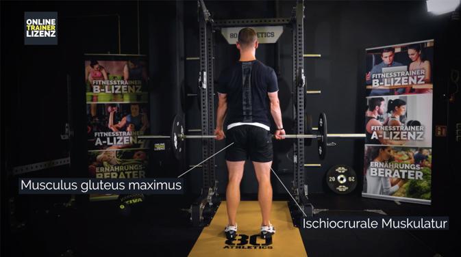 Beanspruchte Muskulatur beim Kreuzheben