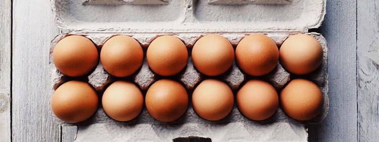 Cholesterin gesund oder gefaehrlich?