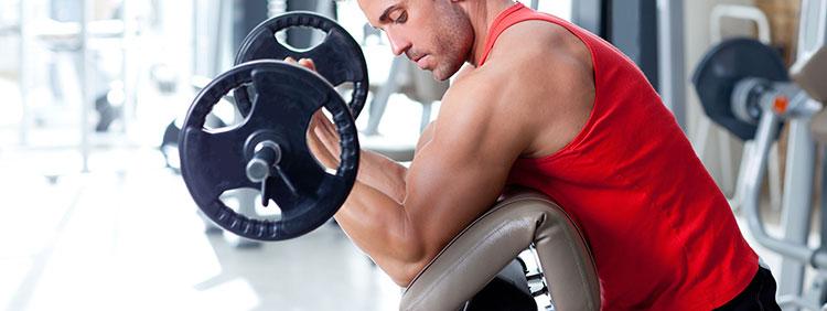Muskelkontraktion