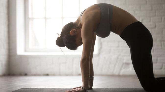 Pilates-Übung für den Beckenboden: Vierfüßlerstand