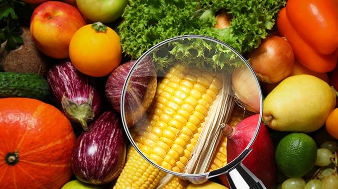 Was ist wirklich dran an den vielen Ernährungsmythen, mit denen wir immer wieder konfrontiert werden? Wir klären auf!
