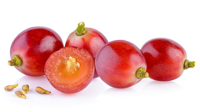 Oligomere Proanthocyanide (OPC) kommen in der Schale von Trauben, aber auch in Kakaopulver und Äpfeln vor.