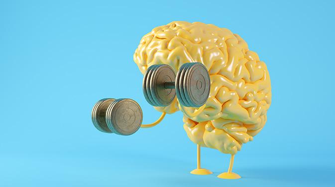 Auch die Gehirnleistung und das Gedächtnis können durch Alpha-GPC positiv beeinflusst werden.