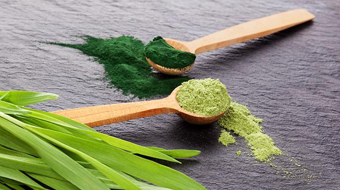 Sowohl Spirulina als auch Chlorella sind beide sehr nährstoffreiche Algen-Varianten, die unserer Gesundheit zugute kommen können. Sie werden häufig in Form von Pulver angeboten und können Smoothies oder Shakes beigemischt werden.